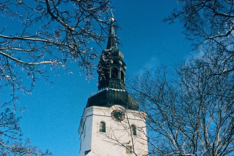 Time will heal! Ancient Clock Time Church Architecture Travel Europe Europe Trip Tallinn Old Town Estonia Peace Freedom Ancient Tree Low Angle View Architecture Plant Built Structure Sky Nature Building Exterior Blue Religion Belief Branch Place Of Worship Spirituality Building Day Tower Bare Tree