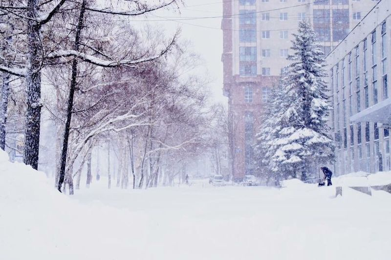 The Culture Of The Holidays Snow ❄ Winter Cold Beauty Front View Building Story Nature
