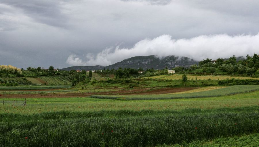 Landscape_photography Rainy Days Countryside Relaxing View Taking Photos Feeling Creative OpenEdit EyeEm Best Shots Freshness EyeEm Nature Lover Nature Beauty In Nature The Great Outdoors Mountain Agriculture Field Landscape Cloud - Sky Agricultural Field Storm Cloud