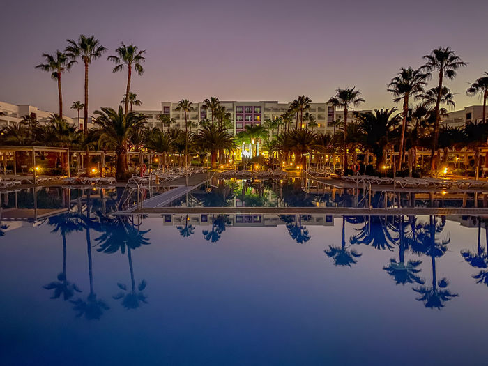 Reflection of palm trees in swimming pool at night