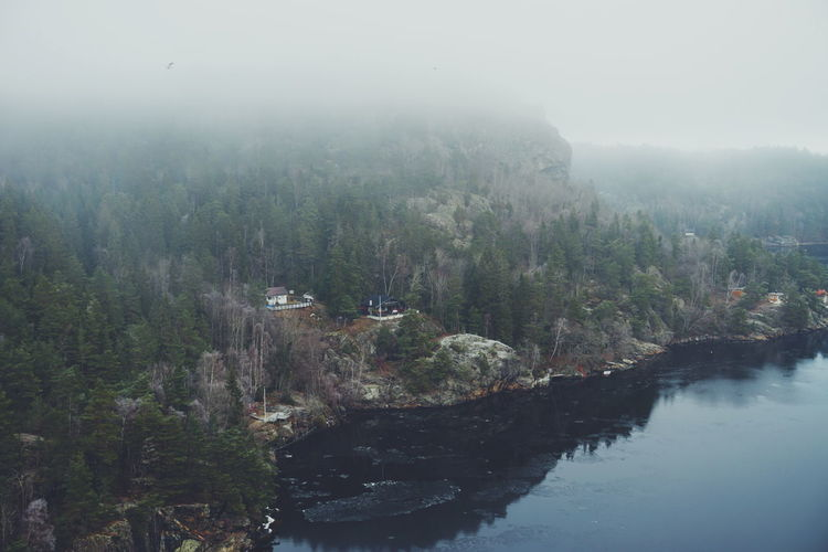 svinesund, Norwegian side Tree Nature Fog Beauty In Nature Sky Forest Growth Outdoors Scenics Water Landscape Lush - Description Day Cold Weather Border Svinesund Bru Svinesund Norway Nature Green Frost Aerial View Tranquility Fjordsofnorway Ringdalsfjorden