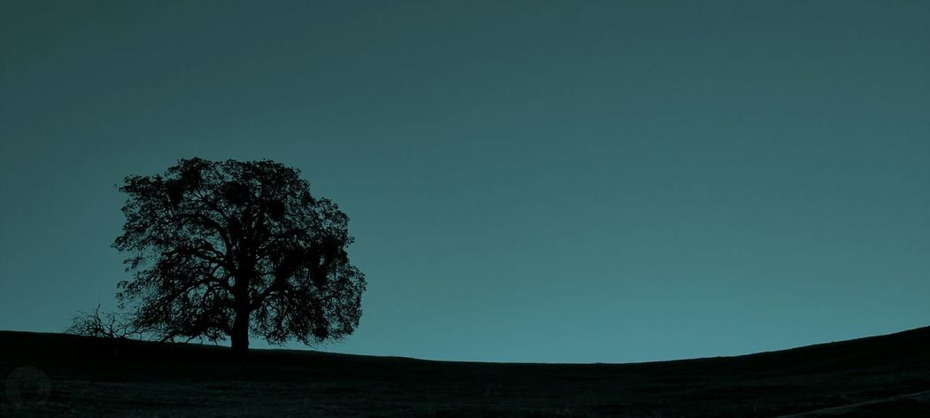 Alone Alone Time Opensky Nature Treesilhouette Silhouettes Tree Ipulledoverforthis Hills Mountain View Mountain Darkness Exceptional Photographs EyeEm Best Shots