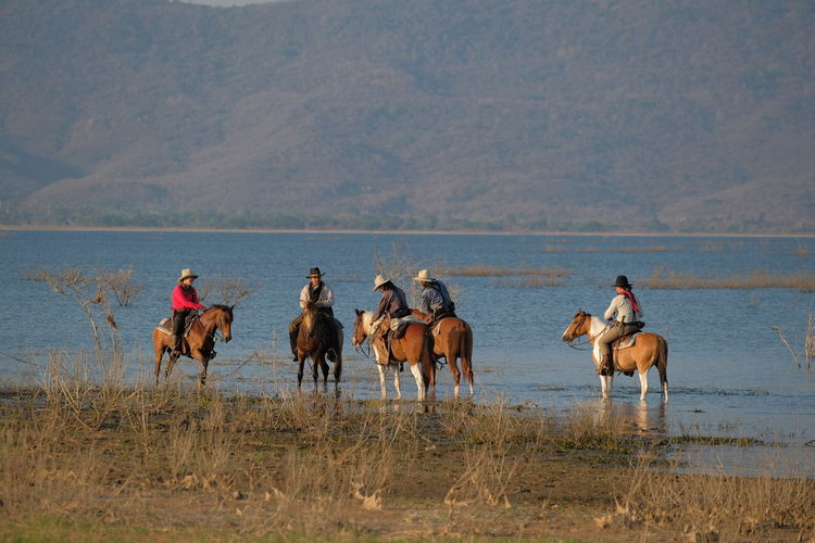 People riding horses in a lake