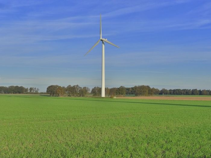 Wind turbines on grassy field