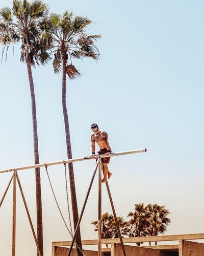 Low angle view of shirtless man climbing on metallic rods by coconut palm trees against clear sky
