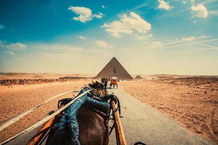 Horse cart at desert