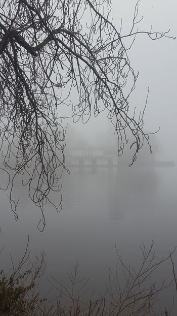 Alster Germany🇩🇪 Hamburg Hamburg City January January 2018 Winter Winter Fog Beauty In Nature Foggy Foggy Day Germany Lake Lake View Mystical Atmosphere Nature No People Outdoors Peaceful Peaceful And Quiet Silence Of Nature Fog Tranquility Tranquil Scene Scenics Idyllic Mist Hazy  Water Cold Temperature