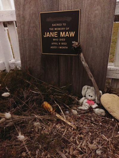 Jane Maw
