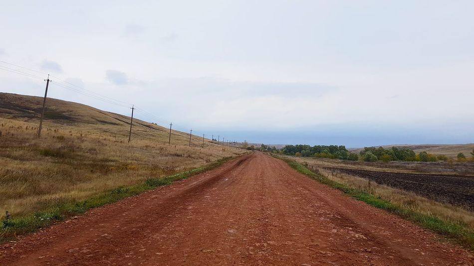 Rural Scene Agriculture Field Cereal Plant Sky Landscape Cloud - Sky