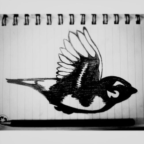 AViAN Draw, #music #techno #label