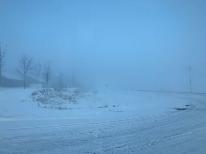 Foggy April morning in Minnesota Environment Blue Powder Snow Outdoors Tree Landscape Beauty In Nature Frozen Ice Land