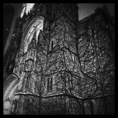 Free wine Built Structure History Architecture I See Black And White Only In Black And White Blackandwhite Throughmyeyez Black And White Photography ChiTown In The City Chicago Inchicago No Color Blackandwhite Photography Black And White Church
