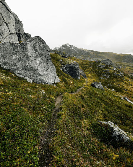 Trail through the wilderness in Norway. Norway Lofoten Scandinavia Beauty In Nature Nature Mountain Grass Green Color Rock Landscape Plant Environment No People Growth Scenics - Nature Tranquility Outdoors Rock - Object Mountain Peak Trail Sky Hiking Hiking Trail Adventure Trail In The Mountains
