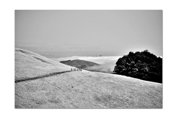 Mount Talmalpais State Park 12 Marin County Hiking Mt. Tam Rock Spring Trail Hiking❤ Scenic Mount Talmalpais Hiking Adventures Bnw_friday_eyeemchallenge Marin Headlands Bnw_dramatic_landscapes San Francisco Bay Monochrome_Photography Monochrome Fog Black & White Black & White Photography Black And White Black And White Collection  Landscape_Collection Landscape_photography Nature Beauty In Nature Nature_collection Marine Layers!