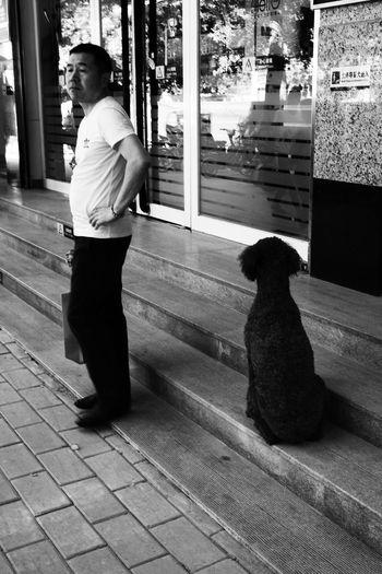 Men Pets
