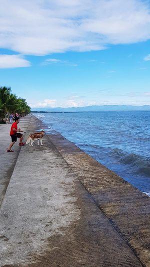 dog and me Dog