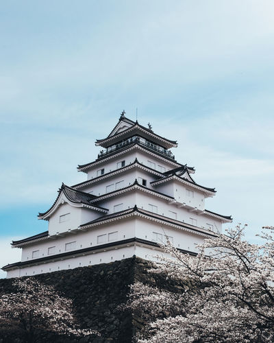 Sakura Architecture Building Exterior Built Structure Sky Low Angle View Cloud - Sky Building Nature No People Tree Plant Religion Belief Place Of Worship Day Spirituality Outdoors Pagoda High Section Spire  Sakura Sakura Blossom Sakura Trees