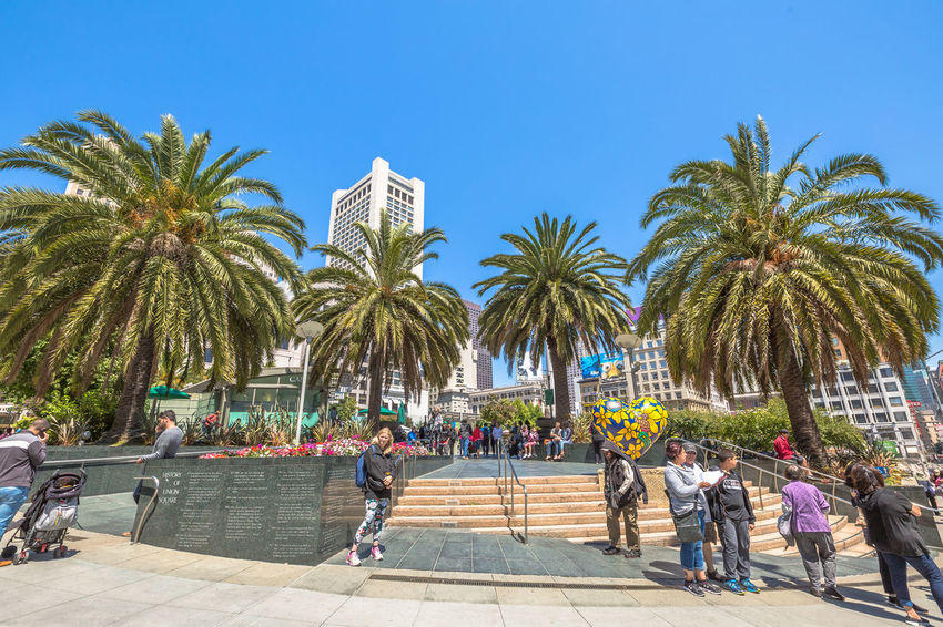 San Francisco, CA, United States - August 17, 2016: crowds of tourists in the popular Union Square, the central square of San Francisco on Market Street, known as the place shopping and luxury hotels. San Francisco, California, United States - August 17, 2016: the Big Bus, Hop On Hop Off, Sightseeing Tour, the popular double-decker bus carrying tourists, standing in Union Square, during a day tour. Cable Car California Market SF San Francisco Square Union Union Square SF United States Market Street San Francisco Market Street Street Union Square  Unionsquare