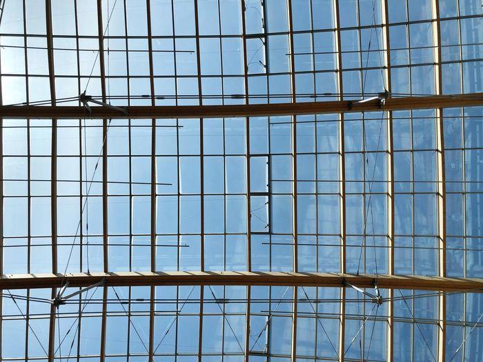 Sky and glass