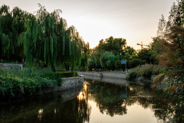 City Dynasty Reflection Sunlight Tree Wall YUAN Canal Capital Day Dusk Moat Nature No People Outdoors Park River Sky Sunset Tree Water