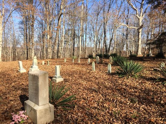 Autumn Beauty In Nature Cemetery Day Fall Grave Stone Graveyard Historic History Nature No People Old Old Cemetery Outdoors Sky Sunlight Tranquility Tree Trees Yucca
