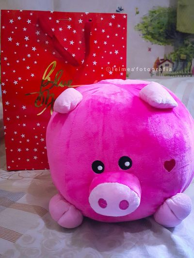 My new cutie baby! He gave me this bcoz he said his Chinese Zodiac sign is pig and that's him daw...funny cute! Haha! Cute Piggy Funnyandcute Kindasweet KiligMuch Febibigwins BLUEMAGIC Stufftoy Bloggerlife Photography Ps_edits Leimeafotografia Eyeem Philippines