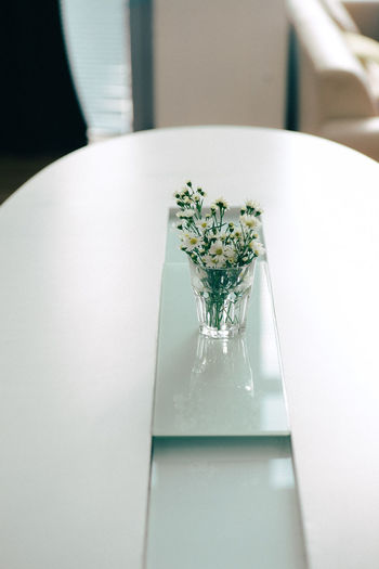 Close-up of white plate on table