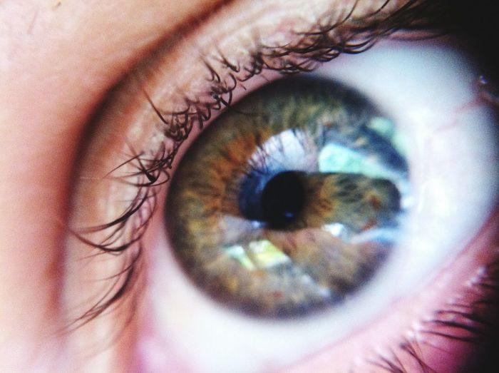 Human Eye Eyelash Eyesight Human Body Part Macro Close-up Sensory Perception Extreme Close-up Iris - Eye Eyeball One Person Real People People Eye Green 💎 day