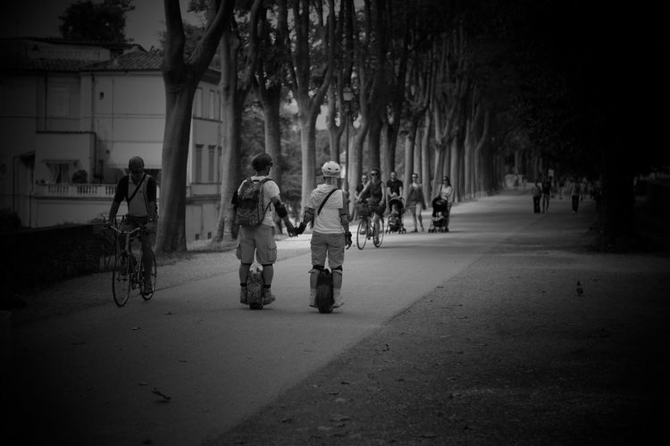 Holding Hands Trees Mura Di Lucca Black & White Scooters People Le Mura Di Lucca Lucca's Walls