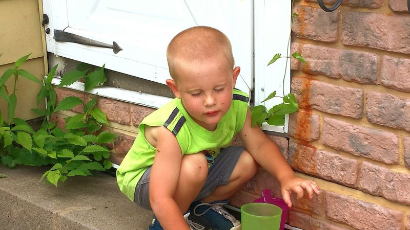 Home Is Where The Art Is iowa One Person Plant Growth Outdoors Nature People Boy Child Place Of Heart