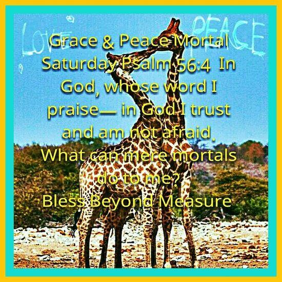 Grace & Peace Mortal Saturday