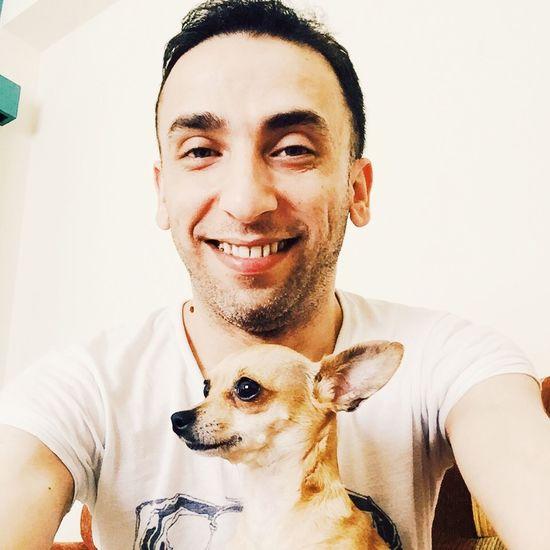 Chihuahua Hi! Hello World Sisy Love❤ Chilove Bestfriend Good Girl  MyLove❤