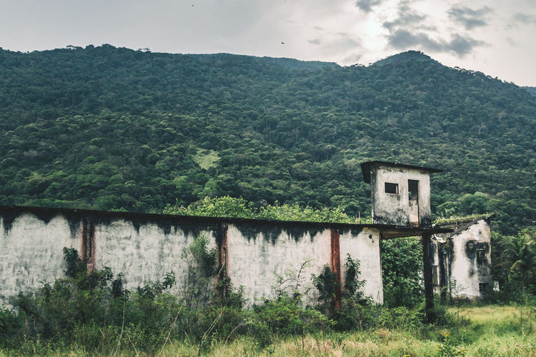 Abandoned prison at Dois Rios on Ilha Grande, Brazil. Abandoned Abandoned Places Architecture Beauty In Nature Brasil Brazil Building Exterior Built Structure Concrete Concrete Jungle Day Forest Green Color Jungle Mountain Nature No People Outdoors Plant Prison Ruins Scenics Sky Tower Tree Neighborhood Map The Great Outdoors - 2017 EyeEm Awards The Architect - 2017 EyeEm Awards EyeEm Selects EyeEm Selects EyeEmNewHere Lost In The Landscape The Great Outdoors - 2018 EyeEm Awards