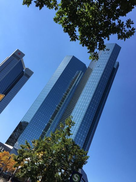 6.9.2016 Tree Low Angle View Architecture City Building Exterior Built Structure Skyscraper Office Building Tall - High Growth Clear Sky Blue Modern Branch Tower Day Sky Outdoors City Life Development Frankfurt Deutsche Bank