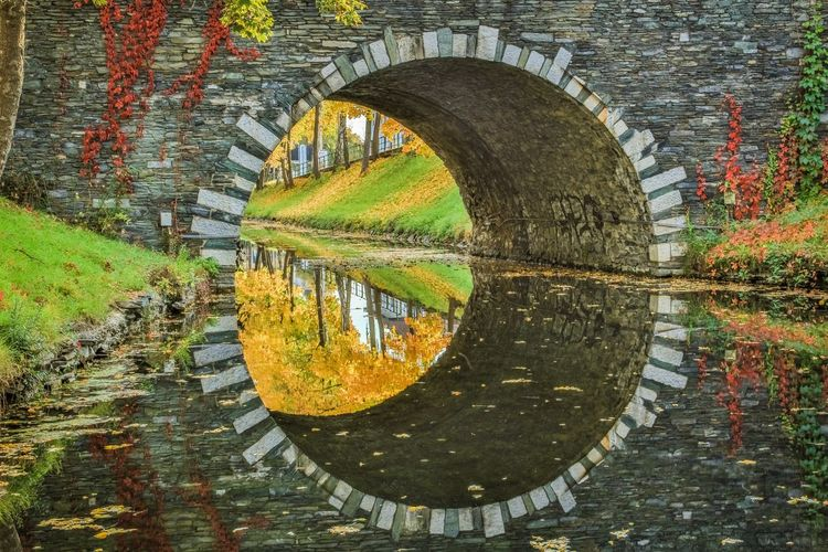 Arch bridge over lake in park during autumn