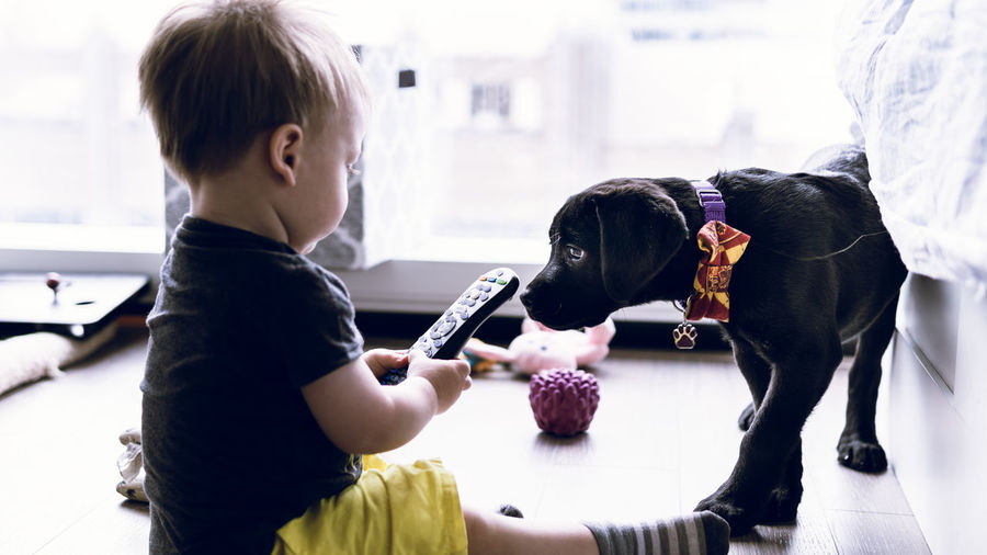 Cute baby boy holding remote control while sitting by dog at home