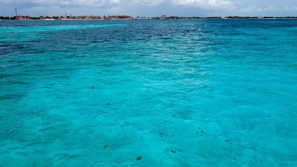 Beauty In Nature Blue Clean Water Beautiful Nature Outdoors Refraction Sea Turquoise Turquoise Colored Turquoise Water Water