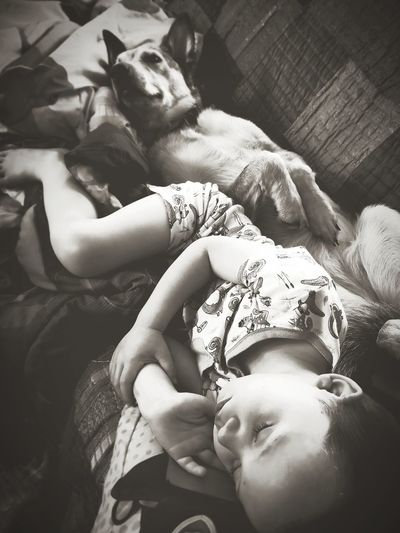 LOVE KNOWS NO BOUND Dog Childhood Shadows & Lights Sleeping Resting Animal Child Boys Boy Paw Togetherness Portrait Happiness Love Lying Down Close-up Friend Babyhood Pets Pet Bed This Is Family
