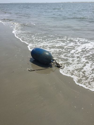 Beach Blue Bouy EyeEM Beach Photography Float Ocean Ocean View Shoreline South Carolina South Carolina Beach United States Washed Ashore