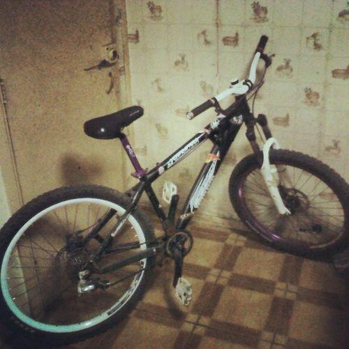 la rosita con ganas de pasear :( Bike Aperradora Regalona Bikeforlife bacaaaan