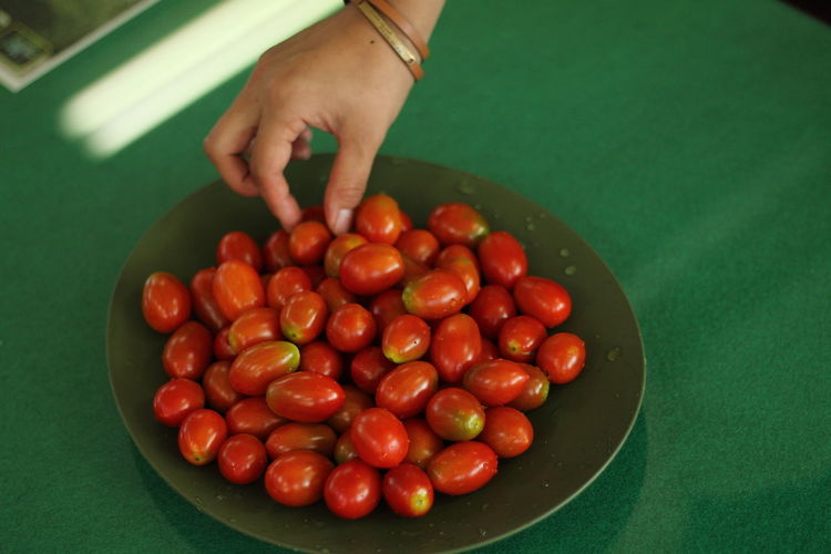 Close-up of human hand touching tomatoes