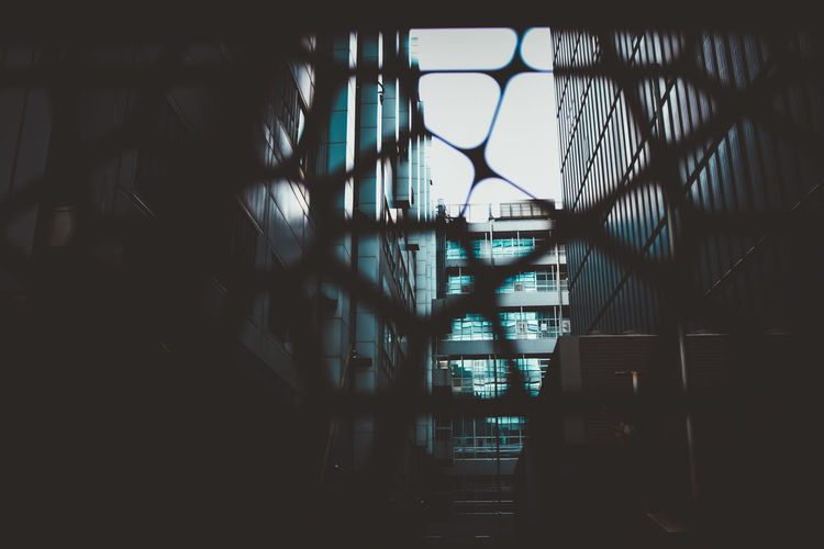 Wall Transparent City Silhouette Railing Glass - Material Staircase Sunlight Dark Metal Nature Building No People Day Indoors  Window Built Structure Architecture Capture Tomorrow