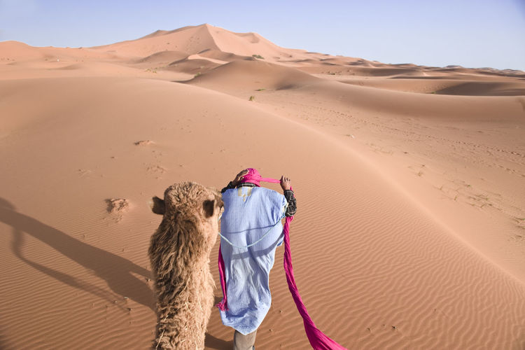 Arid Climate Beauty In Nature Camel Day Desert Horizon Over Land Idyllic Landscape Leisure Activity Lifestyles Nature Non-urban Scene Outdoors Remote Sand Sand Dune Scenics Sky Sunlight Tourism Tourist Tranquil Scene Tranquility Travel Destinations Vacations