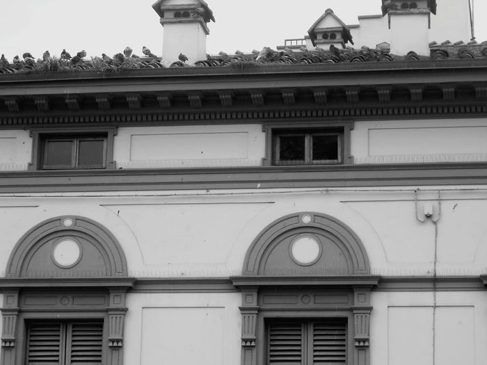 Renaissance Black And White Textures And Surfaces Close Up Structure Shapes Windows Walls Architecture Italy❤️ Florence