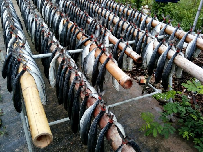 EyeEm Selects FoodPreservation Dried Salted Fish High Angle View No People In A Row Seafood Large Group Of Objects Outdoors Pattern