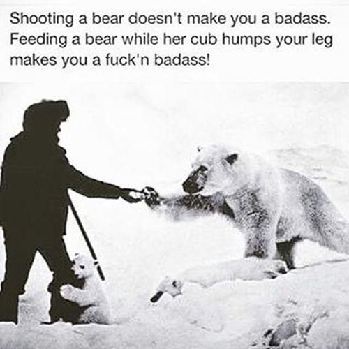 Respect! Protectinganimals Stopthecruelty Polarbear Funny Animals