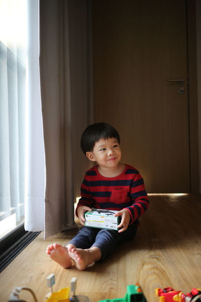 ASIA Boy Boys Child Children Only Curtain Day Happiness Home Interior Human Hand Indoors  Kid Learning Males  Multi Colored One Boy Only One Person People Play Portrait Sitting Smiling Toy Toy Block