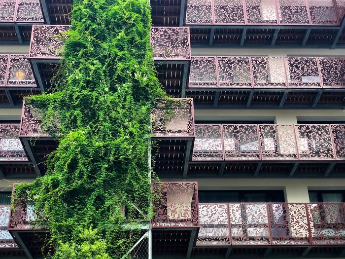 Renovated building in Marolles Marolles Plant Growth Green Color No People Day Nature Full Frame