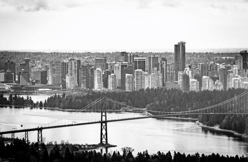 Downtown Black And White Lions Gate Bridge Stanley Park, Vancouver Burrard Inlet Vancouver Harbour Architecture Built Structure Water City Skyscraper Day Cityscape Nature Tree