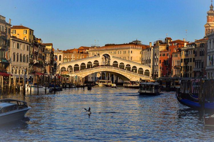 Venice Pontedirialto Italy Nikonphotography